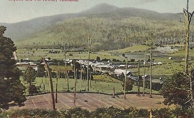 Australia: Tasmania - Lilydale And Mount Arthur By Spurling No. 523