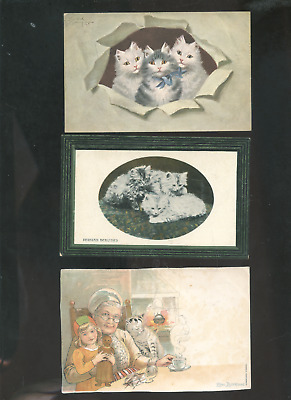 lot of 5 old cat postcards, pussycats