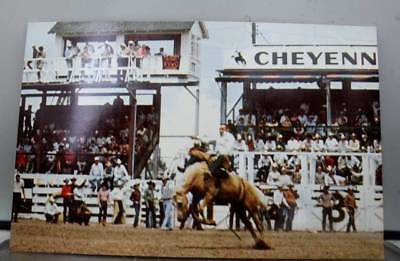 Wyoming WY Cheyenne Frontier Days Bareback Riding Postcard Old Vintage Card View