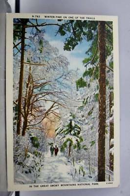 Great Smoky Mountains National Park Winter Trails Postcard Old Vintage Card View