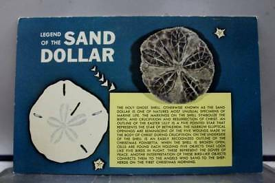 Scenic Legend of the Sand Dollar Postcard Old Vintage Card View Standard Post PC