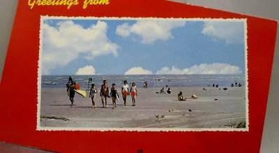 Scenic Beach Greetings Postcard Old Vintage Card View Standard Souvenir Postal