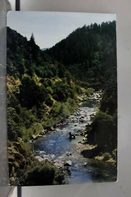 Scenic Winding Brook Postcard Old Vintage Card View Standard Souvenir Postal PC