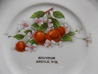 Vintage Souvenir China Cherry Blossom 6 1/2 Inch Plate Argyle Wisconsin Wisc Wi