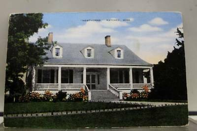 Mississippi MS Hawthorne Natchez Postcard Old Vintage Card View Standard Post PC