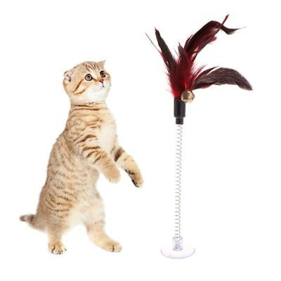 1/5PC Cat Toys Feather Stick Spring Suction Cup Pet Teaser Wand Pen Interactive