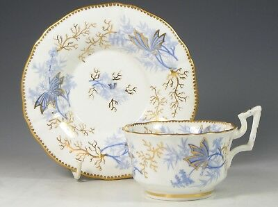 Antique  19Th Century Blue & White Gilded Porcelain Cup & Saucer