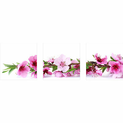 wandbilder blumen pink 90x30 glas 3 teilig acryl bild acrylglasbilder wanddeko eur 39 00. Black Bedroom Furniture Sets. Home Design Ideas