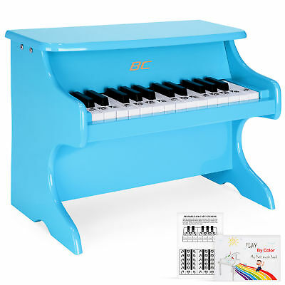 BCP Kids 25-Key Learn-To-Play Piano w/ Key Note Stickers, Music Book