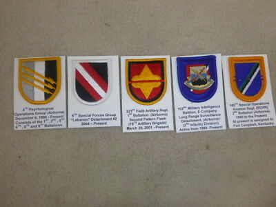Super Id'd Group Of Beret Flashes & Pins From Collection ( G )