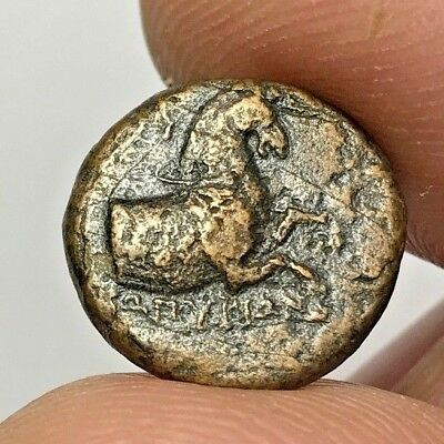 ANCIENT GREEK BRONZE COIN KYME AEOLIS HORSE & CUP 3,4gr 16,6mm