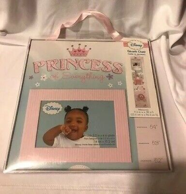Disney Princess Hanging Growth Chart with Attached Photo Frame