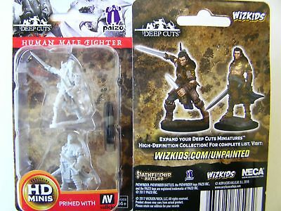 Pathfinder Battles Deep Cuts - Unpainted Miniatures Human Male Fighter - D&D