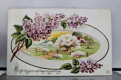 Greetings Bright Blossoms Postcard Old Vintage Card View Standard Souvenir Post