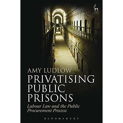Privatising Public Prisons: Labour Law and the Public P - Hardcover NEW Amy Ludl