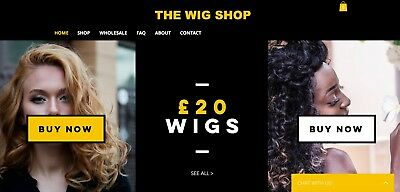 Online WIG DROPSHIP Business For Sale