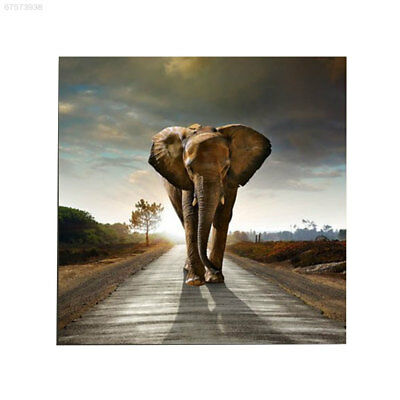 68B1 Pictures Oil Painting SO2 Home Simulation NEW DIY Decoration Gift Office