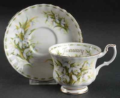 Royal Albert FLOWER OF THE MONTH (MONTROSE) January Cup & Saucer 6439917