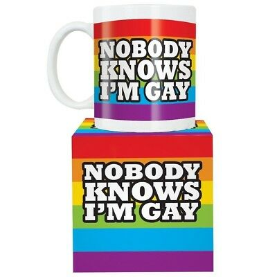 Nobody Knows I'm Gay, Rainbow Coffee Mug / joke gift secret Santa present 1041