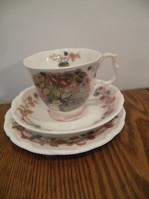 Royal Doulton Brambly Hedge Autumn Cup And Saucer Trio 3 Pieces