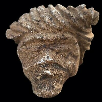 Ultra Rare Stone Age Ancient Neolithic Anthromorphic Vinca Bust, 4500Bc (4)