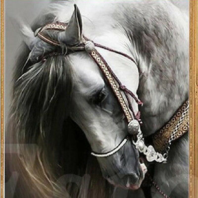 5D Diamond Painting  Horse Embroidery Cross Craft Stitch Home Wall Art Decor BS