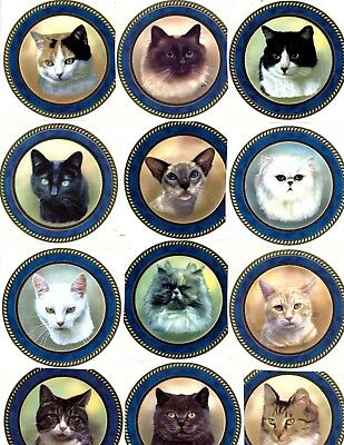"""Framed Cats Different Breeds 12 pcs 3"""" Waterslide Ceramic Decals Xx"""