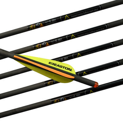 """12pcs 20"""" Archery Carbon Crossbow Bolts Hunting Arrow with Easton Vane Shooting"""