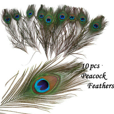 10pcs Natural Peacock Tail Feathers Party Clothing Decoration Craft DIY Decor