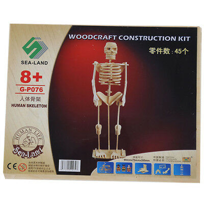 Human Skeleton Woodcraft Construction Wooden 3D Model Puzzle Kit Learning Toy BS