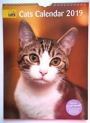 Official Cats Protection Cat Calendar 2019