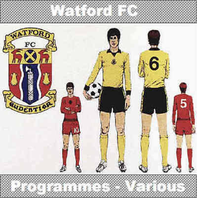 Programme Watford Football Vicarage Road Hornet Home Game Programmes - Various