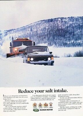 1994 Range Rover - Salt Intake - Original Advertisement Print Art Car Ad K54