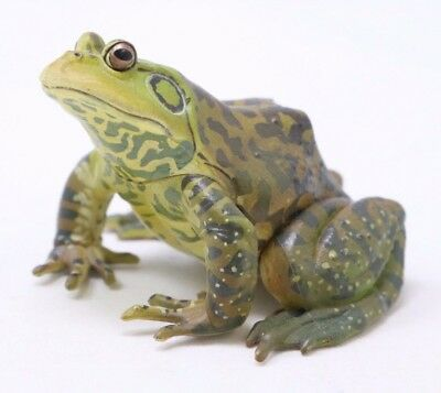 "Kaiyodo Frog Bullfrog Figure  Authentic 1.5"" Yujin Japan A8448"