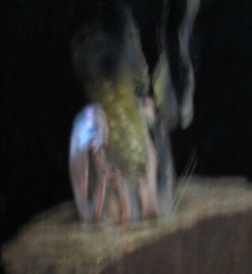 haunted ring Hazim MArid Djinn Genie of perpetual Wealth Riches witches amulet
