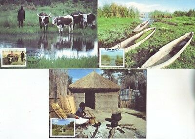 South West Africa - Life in the Caprivi Strip (3no. Maxicards) 1986