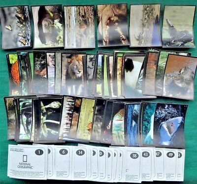 Bundle Lot of 160+ National Geographic Stickers dated 2004 by Magic Box Int