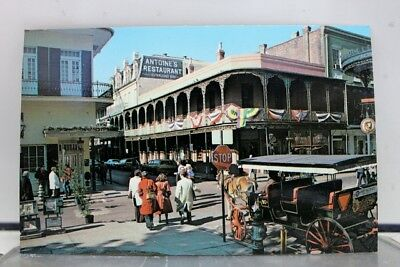 Louisiana LA New Orleans Antoine's Postcard Old Vintage Card View Standard Post