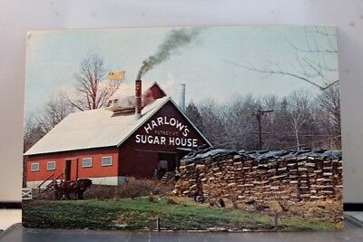 Vermont VT Maple Sugaring House Postcard Old Vintage Card View Standard Souvenir