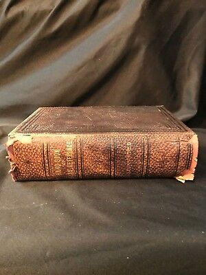 1898 Hand Book of Ready Reference Manikin of Horse & Cow Sheep Animal Husbandry