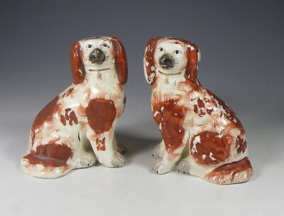 Pair Small Antique 19Th Century Staffordshire Pottery Spaniels