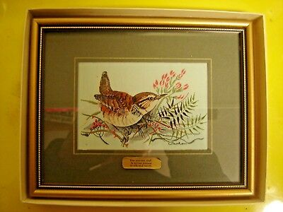 Embroidery of Wren by The Weavers of Coventry: Frame 19 X 15 cm. J.&J. Cash Ltd
