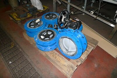"10"" Flanged Butterfly Valve With manual geared actuator. Wouter Witzel Eurovalve"