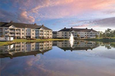 Wyndham Governors Green, 189,000, Points, Annual,timeshare, Deeded