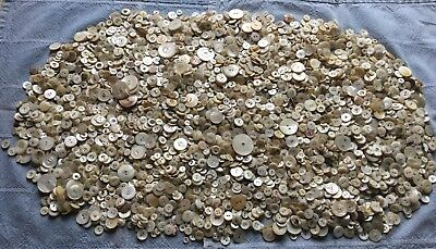 5 Lbs Pounds Antique Vtg MOP Buttons - White Many Sizes - Pearl Shell Lot