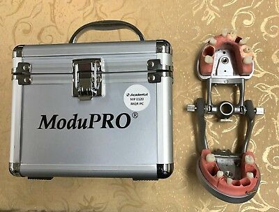 Acadental ModuPRO Endo Dental Typodont - CRDTS/NERB/WREB - MP E120 MQR-PC