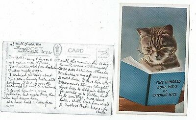 Post Cards Cats One Hundred & One Ways Of Catching Mice