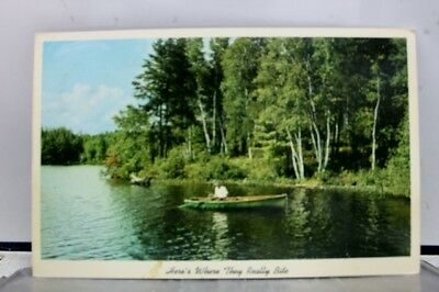Scenic Lake Fishing Really Bite Postcard Old Vintage Card View Standard Souvenir