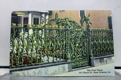 Louisiana LA New Orleans Corn Fence Postcard Old Vintage Card View Standard Post