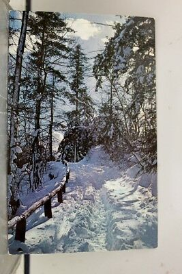 Scenic Winter Country Road Postcard Old Vintage Card View Standard Souvenir Post